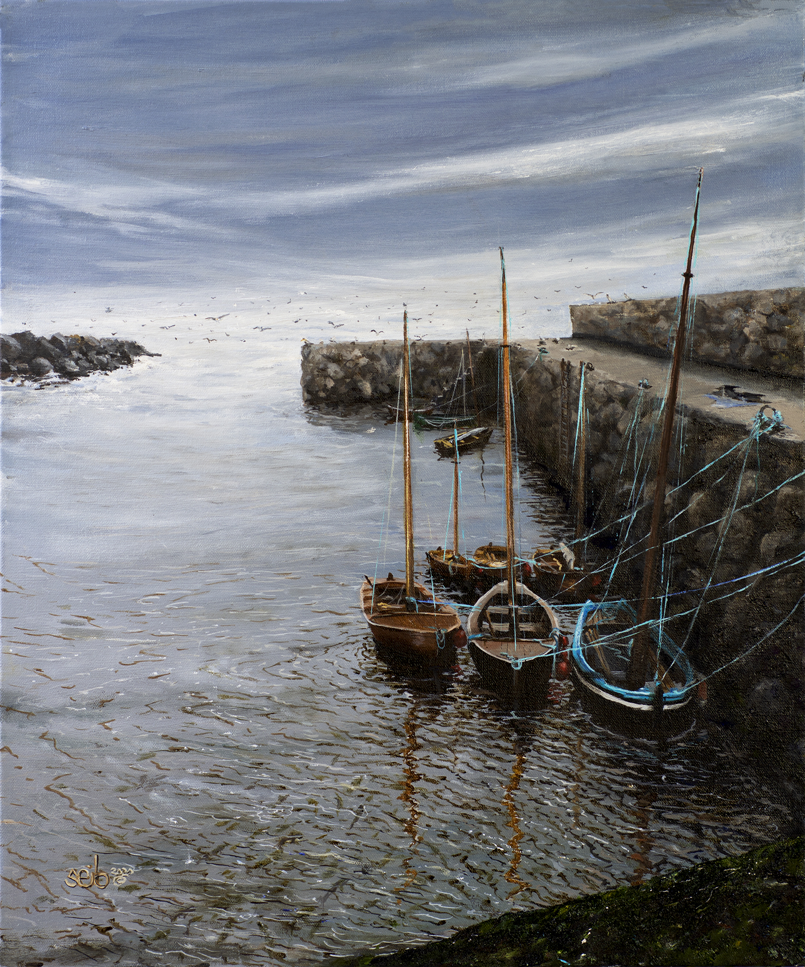 Boats of Donegal